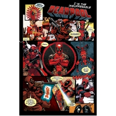 Постер Maxi Deadpool Panels 33793